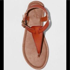 Women's Lady Toe Thong Sandal - Universal Thread
